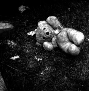 05-Teddy_Bear